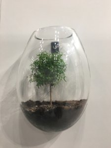 Nicola Manning Design Interior Design Trends Blog Series ICFF 2017 New York Accessories Terrarium